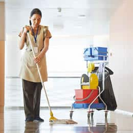 Cleaning Businesses