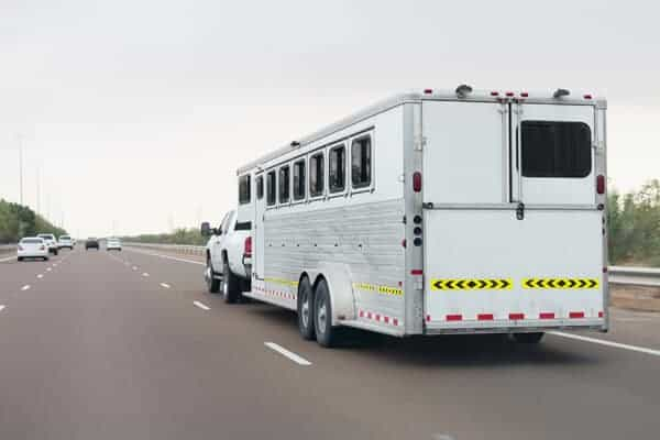 horse hauling insurance 1