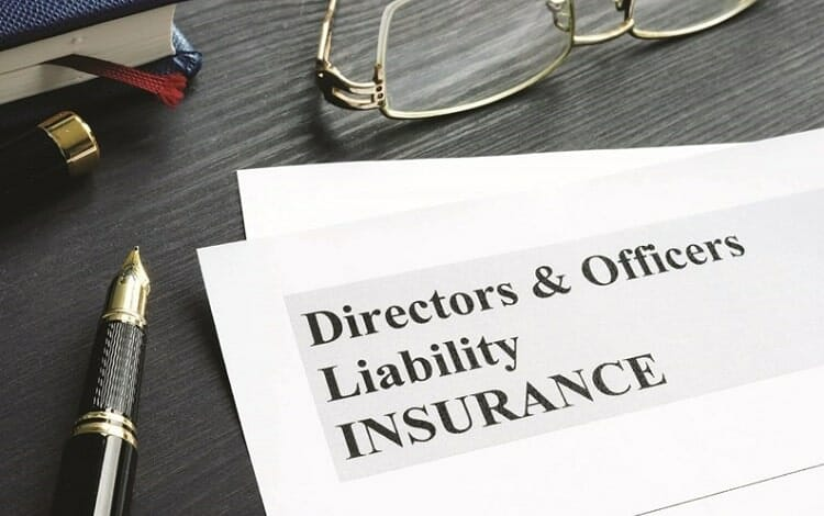 what is D&O insurance